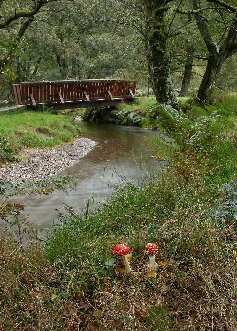 glendalough-bridge
