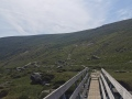 Glendalough-Spinc